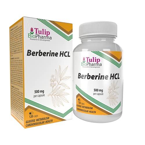 Berberina HCL 500mg 120 capsule, TESTATO IN LABORATORIO da AGROLAB GERMANIA, altamente dosato, non OGM, senza riempitivi o additivi