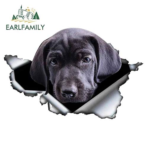 FAFPAY Car sticker 13cm x 7.6cm black cane corso car sticker ripped metal decal reflective stickers dwaterproof water style pet dog car decalsStyle C