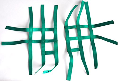 Nerfbar Netz Quad ATV grün Nerf Bars 3&2