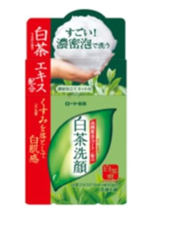雪だるま荒涼としたロードブロッキングロート製薬 白茶爽 白茶洗顔石鹸 高純度茶カテキン配合 濃密泡立てネット付 85g