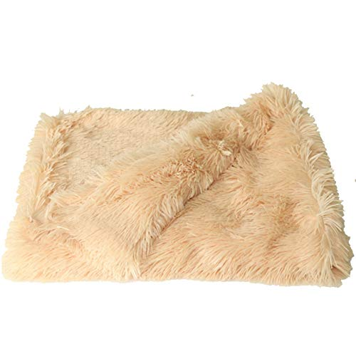 Dog Blanket Pet Blanket Pet Dog Cat Fluffy Fur Blanket Sleeping Mat Dogs Cats Bed Cushion Cover Reversible Double Layer Washable For Dog Bed Couch Sofa (Color : Biege-56x36cm)