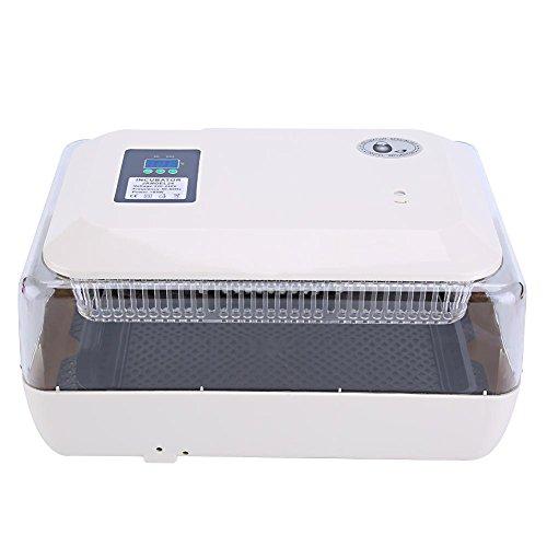 Superior Digital Automática Incubadora de Huevos de Aves de Corral con Control de Temperatura (24 Huevos)