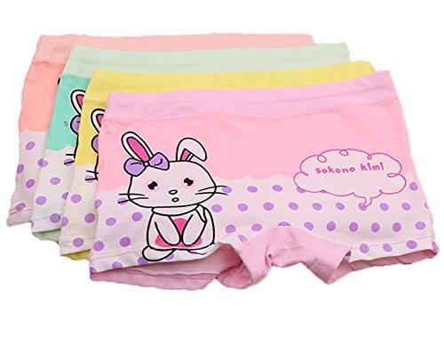 FAIRYRAIN 4 Packung Baby Kleinkind Mädchen Kaninchen Punkte Pantys Hipster Shorts Spitze Baumwollunterhosen Unterwäsche 4-6 Jahre