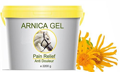 Arnika Gel 90% Arnika Pferdesalbe – Schmerzstiller & Entzündungsblocker Arnika Gel 2200g l Gel für Muskeln, Sehnen und Gelenke