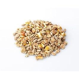 BRINVALE Wild Bird Food