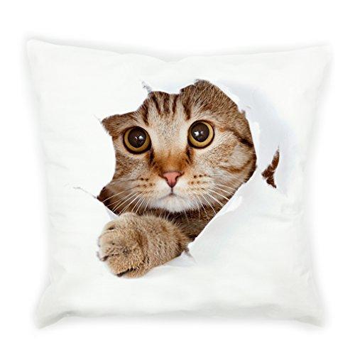 VIPbuy Funda de cojín cuadrada de felpa muy suave de 45 cm x 45 cm para sofá cama, silla (gato 3D)
