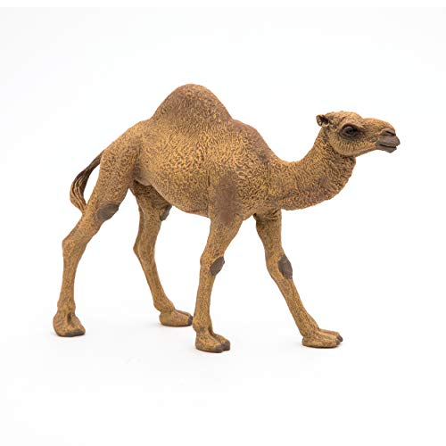 Papo 50151 Dromedary WILD ANIMAL KINGDOM Figurine, Multicolour