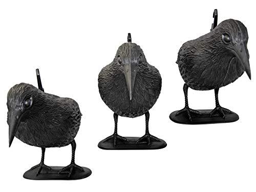 tiroba Premium Taubenschreck Rabe 3er Set - wetterfester Kunststoff - inkl. ebook Vögel vertreiben   Vogelabwehr, natürl. Schädlingsbekämpfung, Schutz vor lästigen Vögeln Tauben, Möwen, Kleinvögel