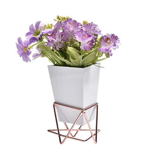 Regal Blumenständer Blumentreppe Blumenregal Pflan Wand- und Schreibtischpflanzgefäße Vase Weiß Keramik und Kupfer - Sukkulenten Mini Cactus Künstliche Blumen Hängende geometrische Wanddekorkübel Pfla