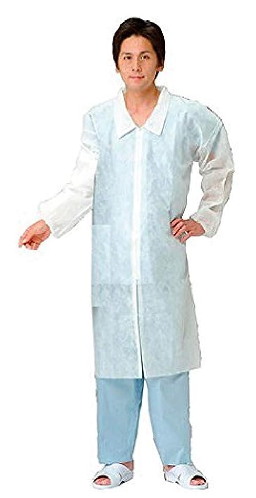 やむを得ない吸収する農夫三商 不織布白衣 ジッパータイプ LL 10枚入