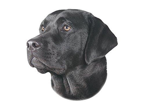 Nobby Aufkleber Labrador schwarz gelb 12 x 3,5 cm