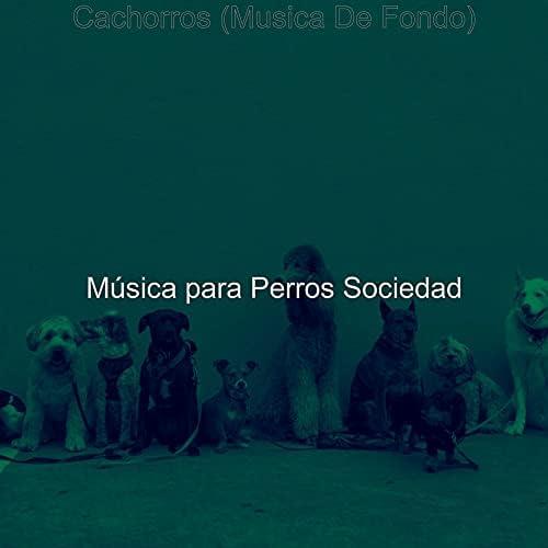 Música para Perros Sociedad