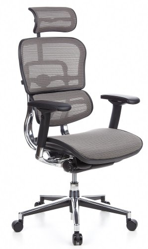 hjh OFFICE 652100 Luxus Chefsessel ERGOHUMAN Netzstoff Grau hochwertiger Bürodrehstuhl mit Vollausstattung