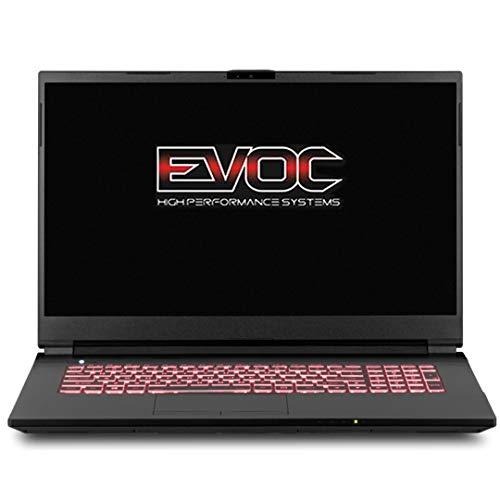 EVOC High Performance Systems NH773 (NH77DPQ) 17.3″ FHD 144Hz, 2.2 GHz i7-10870H, RTX 3060, 32 GB 3200MHz RAM, 512 GB PCIe SSD