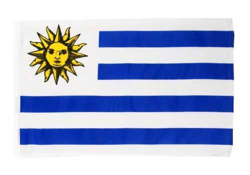 FlagSuperstore© Uruguay Bootsflagge 45,7 x 30,5 cm – Baumhäuser, Wohnwagen – Ärmel 45 cm x 30 cm – Land