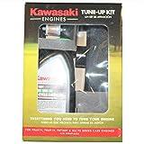Kawasaki 99969-6425 Tune Up Kit for FR Series Engines FR651V-FR691V-FR730V and FS Series Engines FS481V-FS541V-FS600V-FS651V-FS691V-FS730V
