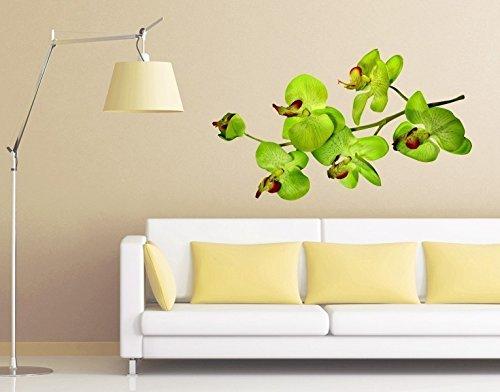 Klebefieber Wandsticker Orchideenzweig B x H: 40cm x 22cm