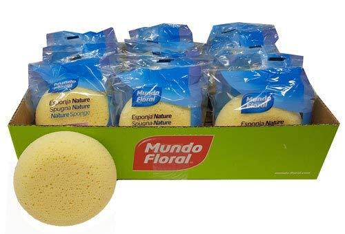Esponjas hidrófilas extra suaves para bebés. Caja de 12 esponjas. Muy absorbentes y suaves para cuidar la piel de tu bebé