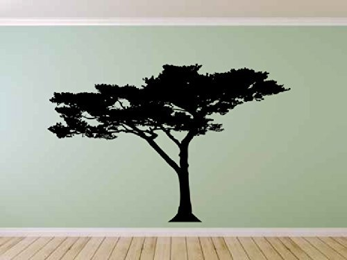 African Baobab Tree Vinyl Wall Decal Sticker Graphic