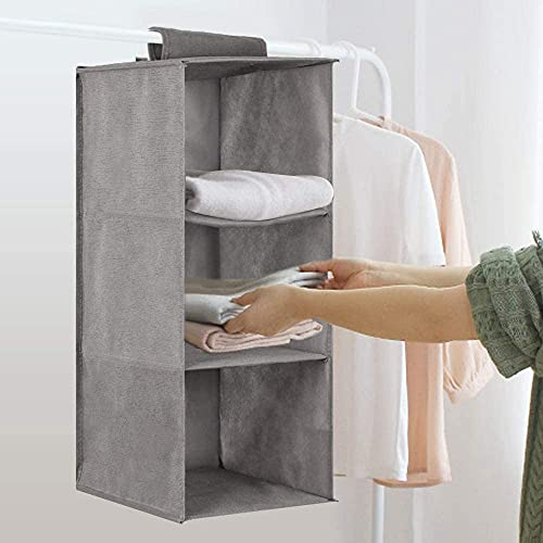 HOOM Almacenamiento para colgar, 3 niveles Organizador de almacenamiento para guardarropa Organizador para armario, Organizador para almacenamiento de zapatos plegable plegable