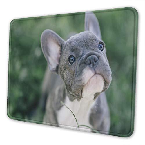 French Bulldog Mousepad FunnyPersonalizedCute Blue French Bulldog ScenePictureDesignAntiSlipwithStitchedEdgesMousepadCuteDeskPadKeyboardMatforWork&Gaming&Gift