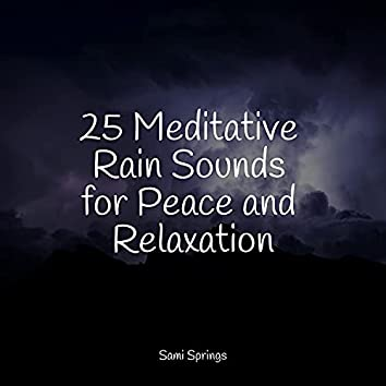 25 Meditative Rain Sounds for Peace and Relaxation
