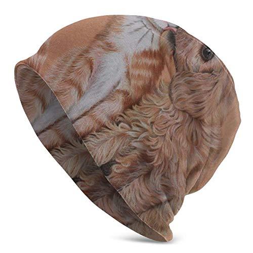 wonzhrui Peinture Art Chats Chiens Dauphins Bonnet sous-Marin pour Hommes et Femmes - Chaud Unisexe à Revers Plaine crâne Bonnet en Tricot