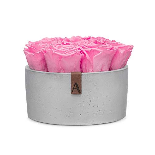 Amara Stone Infinity rozenbox, in lichte steen-box, duurzaam geconserveerd tot 3 jaar, handgemaakt in Duitsland Rund rosé