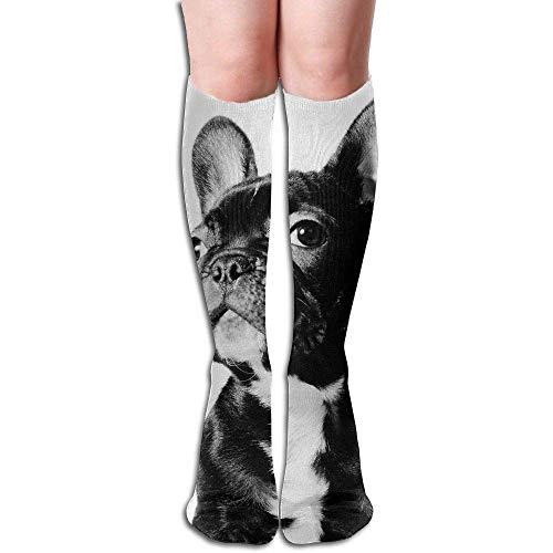 Gorgeous Socks Calcetines de compresión de bulldog francés de equipo...