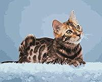 油絵 数字キット 油絵 数字ト ホリデーギフト、誕生日ギフト 40x50センチ フレームレス毛布の上に横たわっている猫