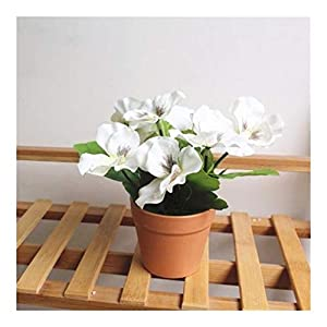 XDRE Artificial Flower 1Pc Artificial Flower Pansy Plant Bonsai Home Office Garden Desk Plant Gorgeous Bonsai Bush Lily Flower Bonsai DIY Party Artificial (Color : White)