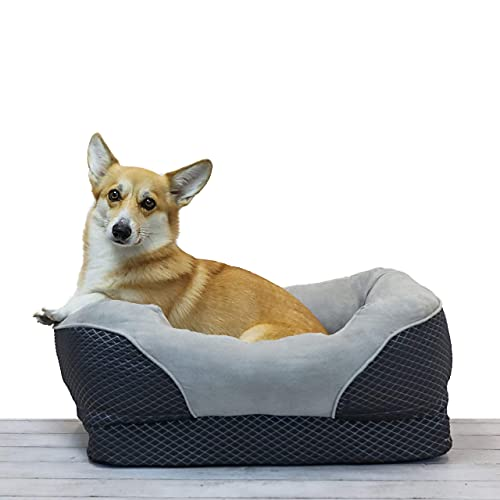 BarksBar Gray Orthopedic Dog Bed - Snuggly Sleeper - with Solid Orthopedic Foam, Extra Comfy Cotton-Padded Rim Cushion and Nonslip Bottom (Small)