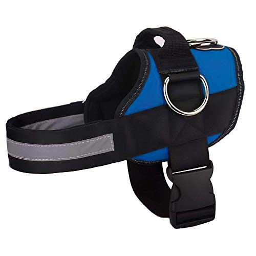 Joyride Harness for Dogs, No-Pull Pet Harness with 3 Side Rings for Leash Placement, Adjustable Soft-Padded Pet Vest for Training, Walking, Running, No-Choke with Easy On-Off Technology