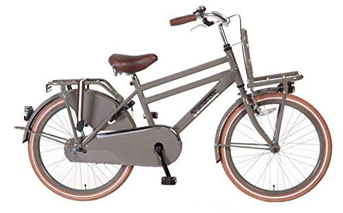 POPAL 22 Zoll Daily Dutch Basic 2288 Jungen Holland Fahrrad, Farbe:grau