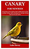 CANARY FOR NEWBIES: The Amateur to Pro Guide on How to Raise Canary as Pets Including Training, Health, Keeping, Diet, Housing, Feeding, and Care For your Canary