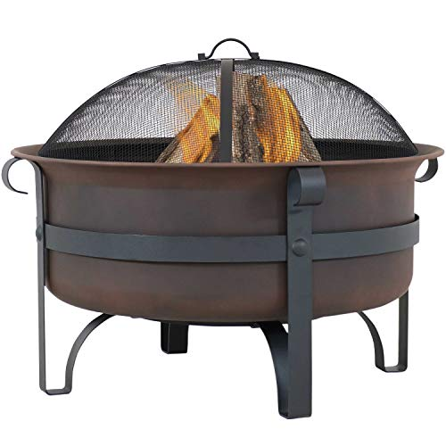 Sunnydaze Large Bronze Cauldron Outdoor Fire Pit Bowl - Round Wood Burning Patio Firebowl with Portable Poker and Spark Screen - 29 Inch