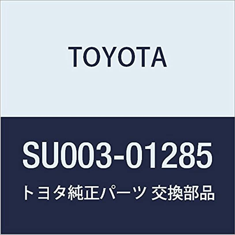 独立した法王文庫本TOYOTA (トヨタ) 純正部品 クォータロックピラー エクステンションSUB-ASSY ハチロク 品番SU003-01285