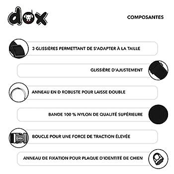 DDOXX Collier Chien Nylon, Réglable | Nombreuses Couleurs & Tailles | pour Petit, Moyen Gros & Grand | Colliers Chat Chiot | Noir, S