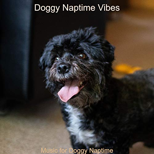 Music for Doggy Naptime
