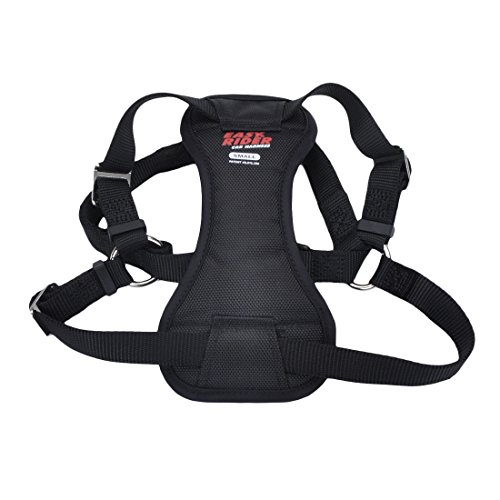 Easy Rider Harness for Dogs
