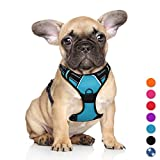 BARKBAY No Pull Pet Harness Dog Harness Adjustable Outdoor Pet Vest 3M Reflective Oxford Material Vest for BLUE Dogs Easy Control for Small Medium Large Dogs (S)