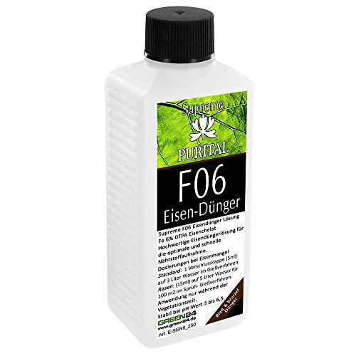 GREEN24 Purital F06 Supreme Eisen-Dünger flüssig, Eisendüngerlösung aus hochwertigen Chelat von DTPA