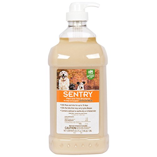 dog shampoo for head lice
