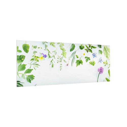 Bilderwelten Paraschizzi in Vetro - Herbs And Flowers - Panoramico,Paraschizzi Cucina Pannello paraschizzi Cucina paraspruzzi per Piano Cottura Pannello per Parete, Misura (AxL): 40cm x 100cm