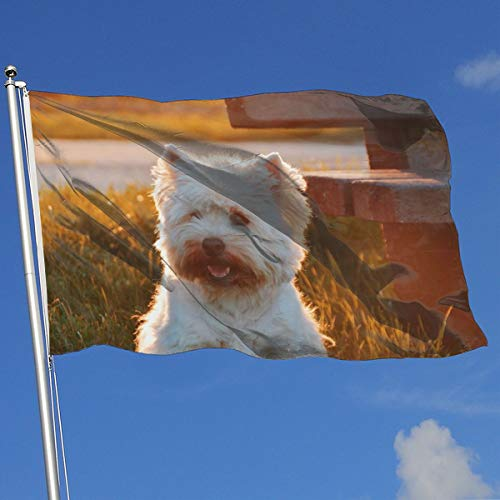 Nicokee Garden Yard Flag, Best Dog Flags 3x5 Home Flag Indoor Outdoor Fall Flags Wall Banners Decoration