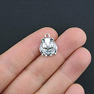 Pendant Jewelry Making for Bracelets and Chains 6 Hamster Charms Antique Silver Tone Just Too Cute Guinea Pig or Gerbil - SC3363