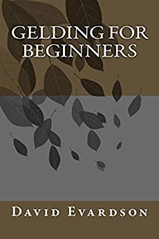 Gelding For Beginners by [David Evardson]
