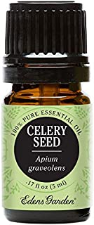Edens Garden Celery Seed Essential Oil, 100% Pure Therapeutic Grade (Highest Quality Aromatherapy Oils- Cold Flu & Detox), 5 ml
