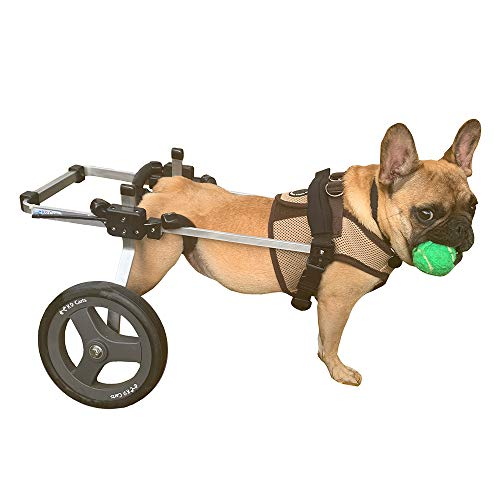 wheelchair carts K9 Carts Dog Wheelchair for Back Legs (Small-Medium) - Made in The USA