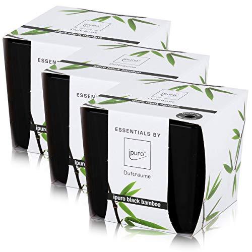 Essentials by Ipuro Duftkerze black bamboo 125g - Kräftig, grüne Frische vereint mit einer holzigen Nuance – ein herb-frischer Duft (3er Pack)